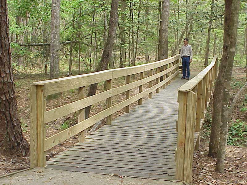 Bridge on interpretive trail