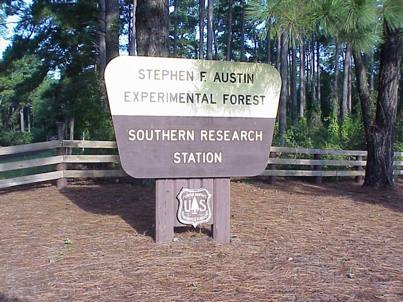 Stephen F. Austin Experimental Forest entrance sign