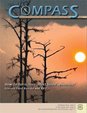 Compass issue 12
