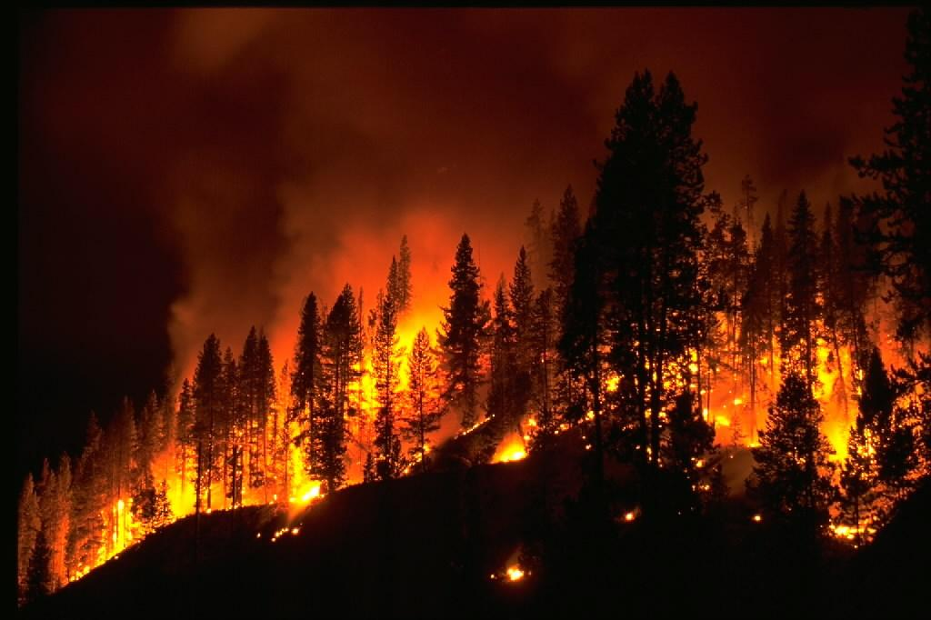 Most wildfires are started by people, either accidentally or intentionally. Photo by NOAA.