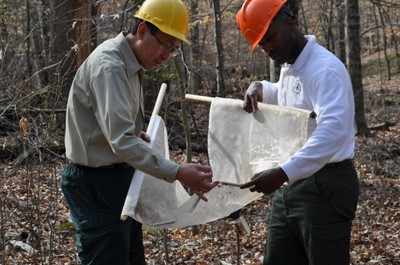Researchers Ge Sun (left) and Johnny Boggs (right) use a net to collect aquatic species from streams to assess water quality condition during forestry operations. Photo by U.S. Forest Service.