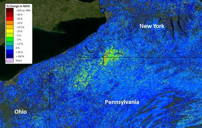 Researchers have introduced  new ForWarn map products to better monitor forest disturbances when year-to-year climate variation interferes with disturbance detection. This ForWarn image from July 11, 2013 shows an ongoing gypsy moth defoliation across western New York and Pennsylvania. Image by U.S. Forest Service.