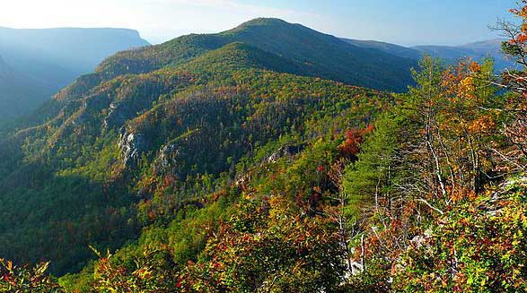 Dogback Mountain in Linville Gorge. Photo by Ken Thomas, courtesy of Wikimedia Commons.