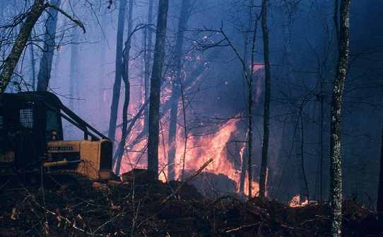 The number of wildfires caused by cigarettes declined sharply over recent years, although most wildfires are still – whether accidentally or intentionally – caused by people. Photo by Andrew J. Boone, South Carolina Forestry Commission. Courtesy of Bugwood.org.