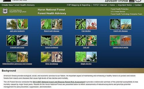 """Read the article """"The Forest Health Advisory System"""""""