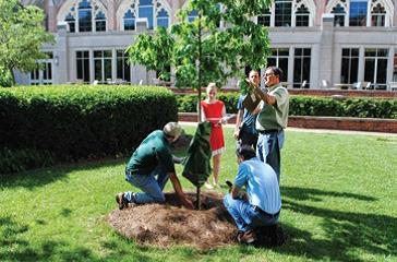 Members of the Agnes Scott College audit team conduct a beta-test of the urban forest sustainability and management audit system. Photo by Jim Abbott.