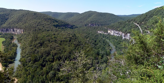 The Ozark National Forest of Arkansas, pictured, is near Wyandotte, Oklahoma, where the conference was held. Photo by Jasari, courtesy of Wikimedia Commons.