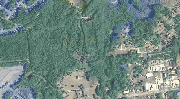 A 2010 aerial photo of land near Hiram, Georgia, overlaid with color represents spatial patterns based on global tree cover data. Tree cover as of 2012 is shown in transparent green; tree cover loss from 2000 to 2012 is shown in transparent blue. Photo courtesy of National Agriculture Imagery Program.