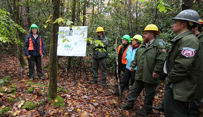 At a recent workshop at the Coweeta Hydrologic Laboratory, SRS and university scientists discussed the effects of hemlock death on stream processes with forest managers. Photo by U.S. Forest Service.