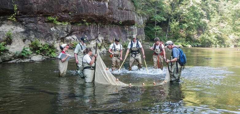 Researchers collect fish and crayfish from a river upstream of the Lewis Smith Reservoir in Alabama. Photo by Susie Adams.