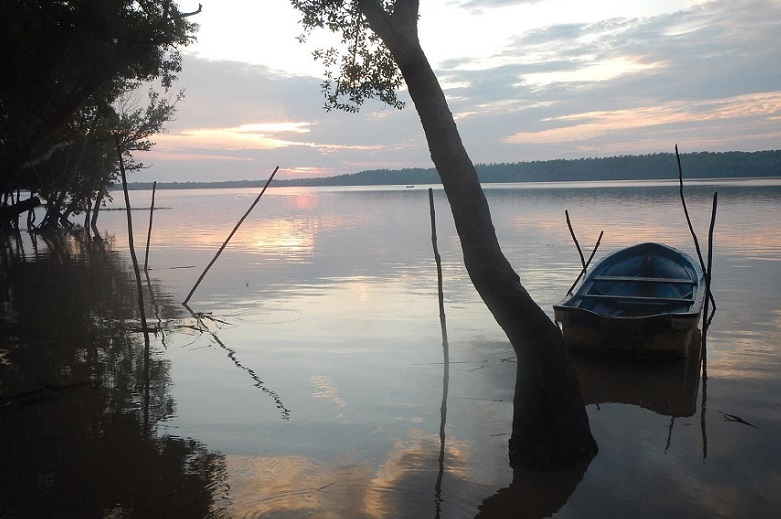 Sunrise on the Rufiji River - Tanzania Forestry Services field station, Nyamisati. Photo courtesy of U.S. Forest Service.