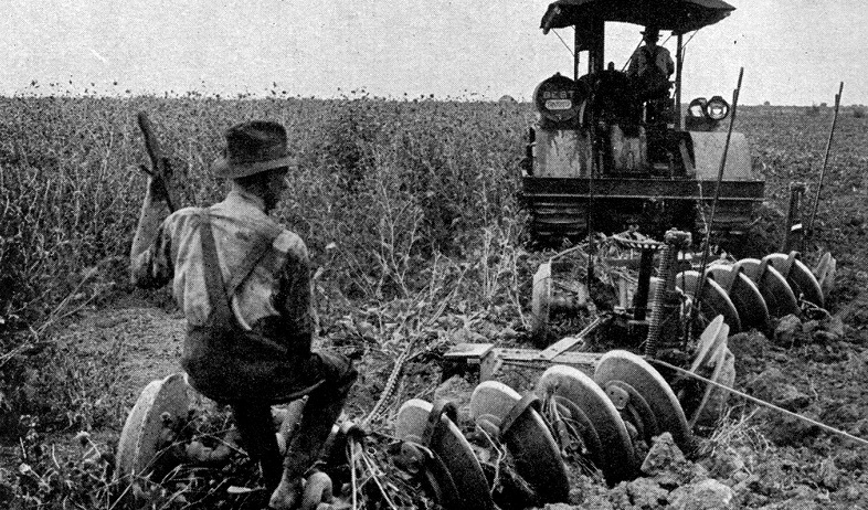 Historic photo showing people plowing a field