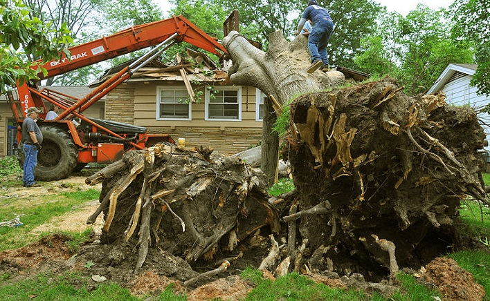 Removing a tree damaged by a tornado in Oklahoma. Photo by FEMA.