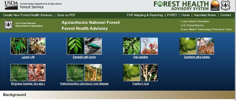 August 2016 Forest Health Advisory for the Apalachicola National Forest.