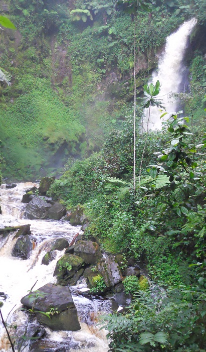 A waterfall inside Nyungwe Forest National Park feeds many rivers in Rwanda. Photo by Ge Sun, U.S. Forest Service.