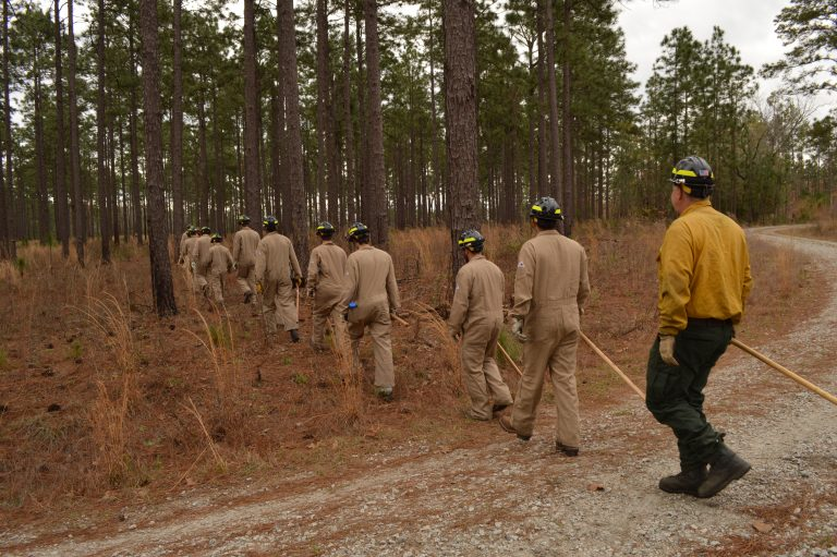 Students and fire crew head into the woods at the Savannah River Site. Photo courtesy of Savannah River Ecology Laboratory.