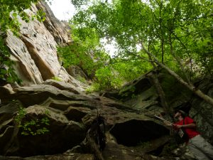 obed-river-cliff-face