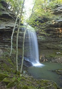 four-mile-falls-obed-river