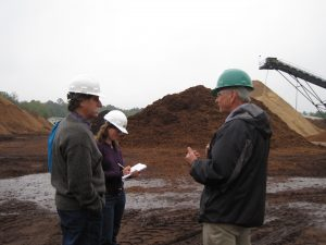 bioenergy-interviews