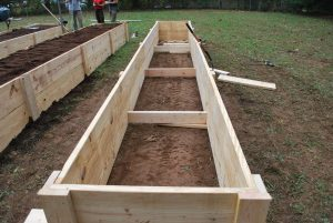 One of the raised beds built for the seedlings