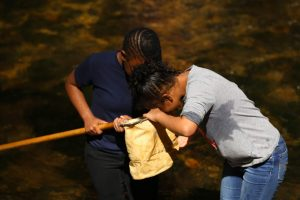 Two young Black girls look at aquatic animals in a net