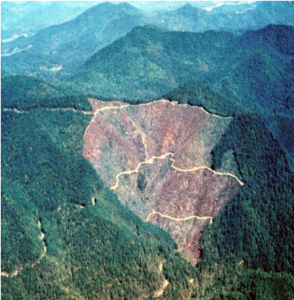 aerial view of mountains, most of them are forested, but one watershed has been clear cut
