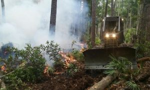 smoke swirls around a bulldozer that is knocking small trees down in a forest