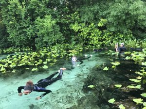 snorkeler surrounded by lily pads