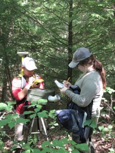 two people stand in a forest collecting data about bat habitat