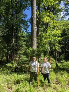 two people with a tall acoustic detector stand in a forest