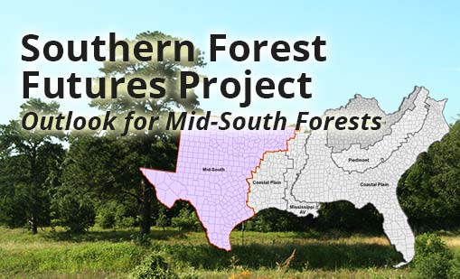 Southern Forest Futures Project: Outlook for Mid-South Forests