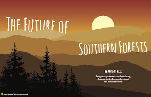 The Future of Southern Forests