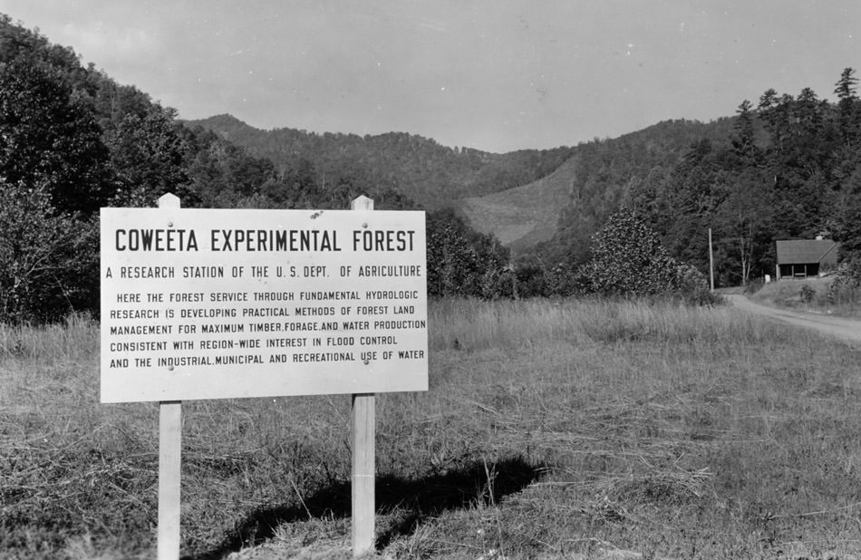 Historic photo showing Coweeta Experimental Forest sign
