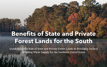 Benefits of State and Private Forest Lands for the South Story Map