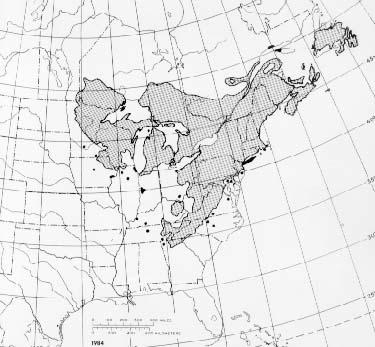 {The native range of Pinus strobus}
