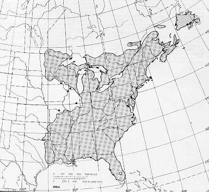 {The native range of Acer rubrum}