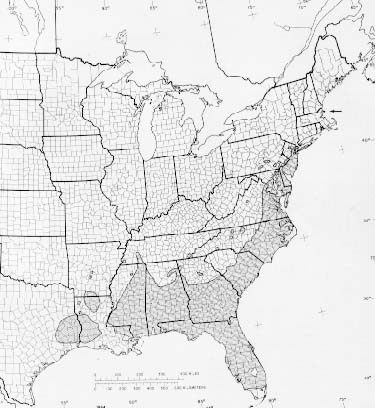 {Native range of Magnolia virginiana}