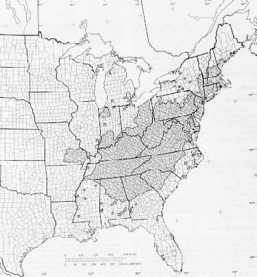 {Native range of Quercus coccinea}