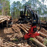 Timber Product Output (TPO) in the South in 2005