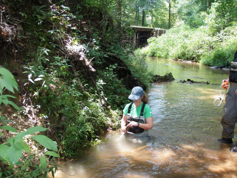 Susie Adams working in a stream