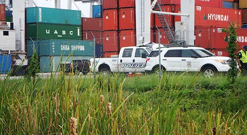 Secured drainage area within the container terminal at Savannah, GA, where plants surveys were conducted while escorted by Georgia Port Authority Police and US Customs Officers. Photo by RD Lucardi, USFS